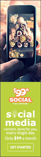 99 dollar social review for social media services
