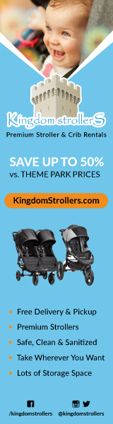 How Much Is Stroller Rental At Disney World? 3